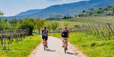 1 Day Tuscany Bike Tour €109